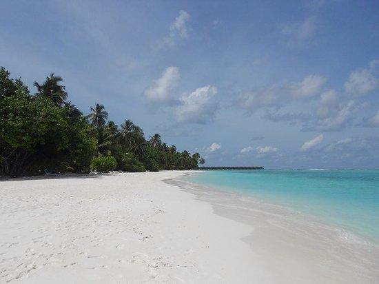 Meeru Island Resort & Spa : Now that's a beach!!!