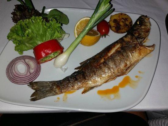 Voyage Torba : Meal in fish restaurant