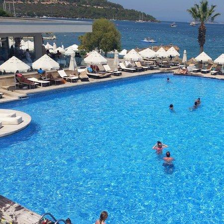 Voyage Torba : main pool