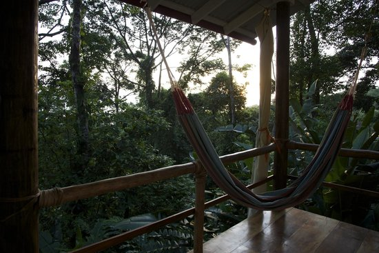 La Loma Jungle Lodge and Chocolate Farm: View from our rancho