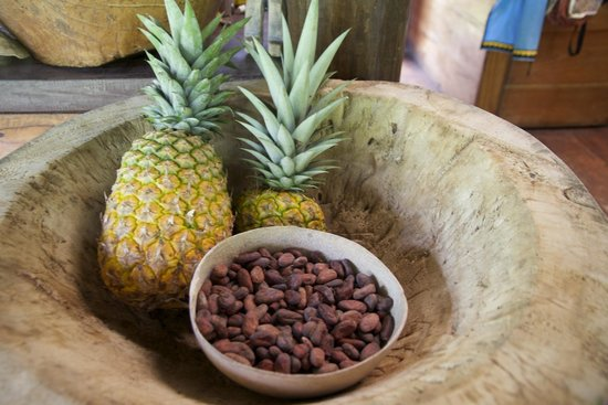 La Loma Jungle Lodge and Chocolate Farm: Fruit and cocoa display in the dining area