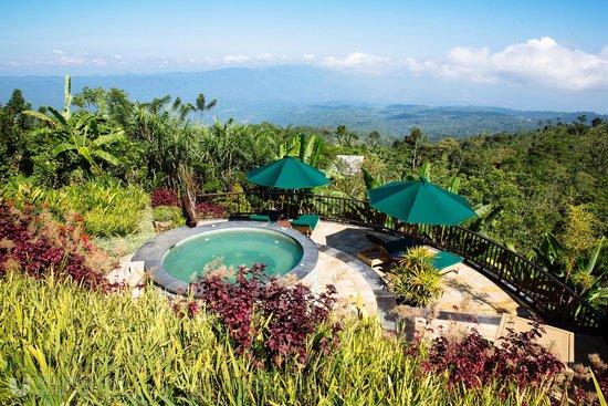Munduk Moding Plantation : View over the jacuzzi