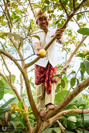 Munduk Moding Plantation: Friendly staff member picking fruit