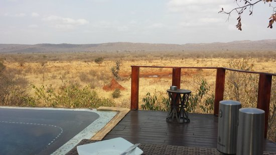 Madikwe Hills Private Game Lodge: room with a view