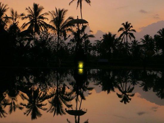 Hati Padi Cottages: Piscine vue sur rizières