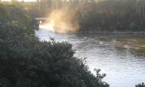 Falls Motel & Waterfront Campground: View of Haruru Falls from the patio area.