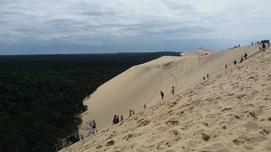 la plage picture of dune du pilat la teste de buch tripadvisor. Black Bedroom Furniture Sets. Home Design Ideas