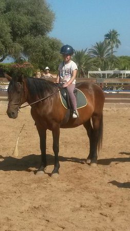 Sun Club Eldorado : Free Horse Riding