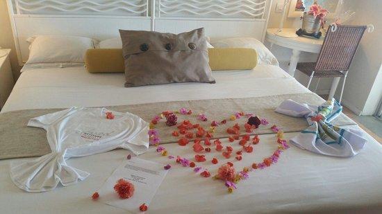 Tropical Attitude: Honeymoon welcome suprise
