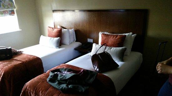 Radisson Blu Edwardian Grafton Hotel: Twin Beds