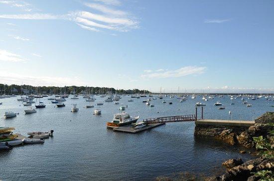 Harborside House: Harbor view