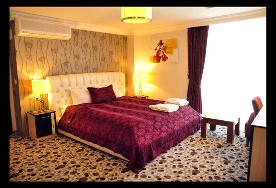 Ankara Risiss Hotel: DE LUXE ODA