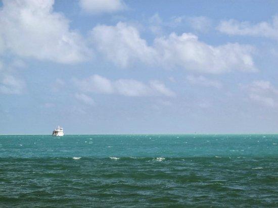 Hilton Bentley Miami/South Beach : Mare
