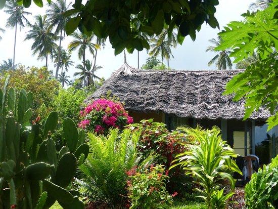 Zanzi Resort: Leben im Park