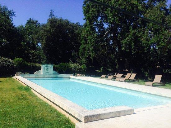 Hotel La Bastide du Bois Breant : La piscine dans le parc, sous un immense chêne