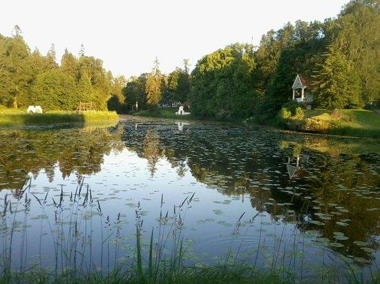Vihula Manor Country Club & Spa: Lago en medio de la hacienda.