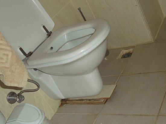 Alenz Suite Hotel : propt up toilet
