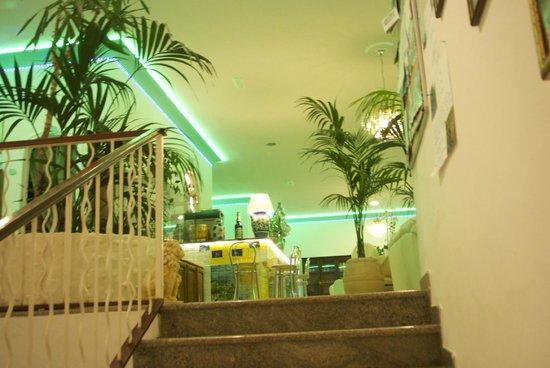 Hotel Villa Bellavista : The green neon lights....