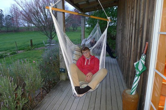Kamahi Cottage: The Boys Loved The Swing Seats!