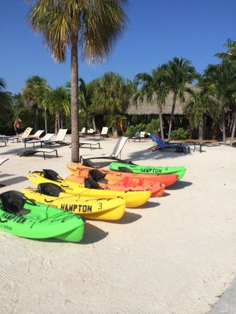 Hampton Inn Key Largo: Kayaks and stand up paddle boards for rent from the beach