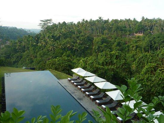 Alila Ubud : Landscape view