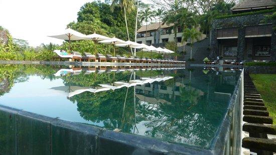 Alila Ubud : Pool like a Mirror!!!