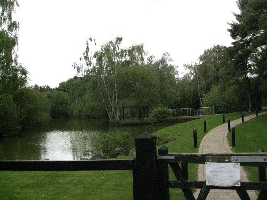 Great Hallingbury Manor: The lake