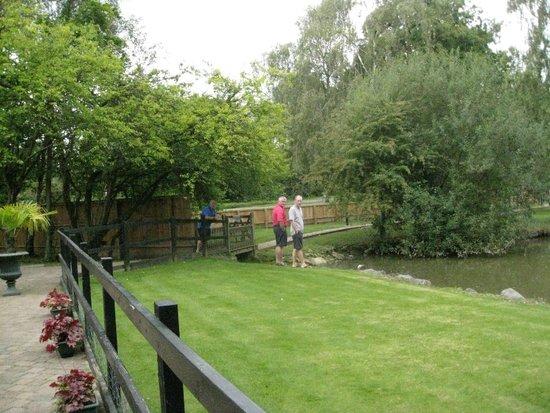 Great Hallingbury Manor: Viewing the carp