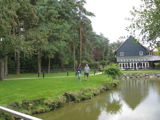 Great Hallingbury Manor: Having a stroll around the lake