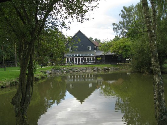 Great Hallingbury Manor: Looking onto the restaurant
