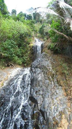 Khao Phanom Bencha National Park : khao phanom bencha