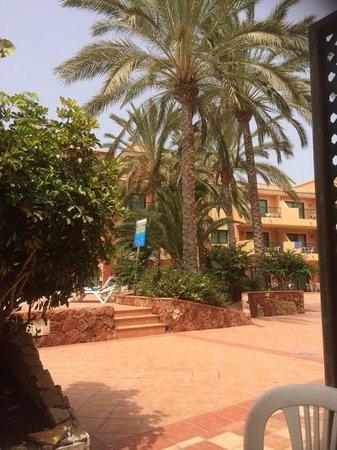 Labranda Aloe Club Resort: my view