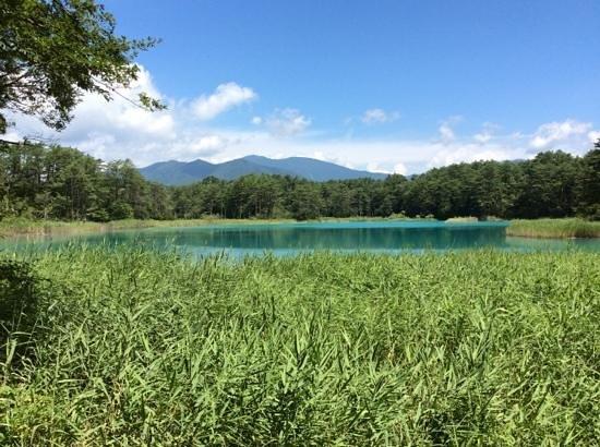 Goshikinuma Lake : 心洗われる景色
