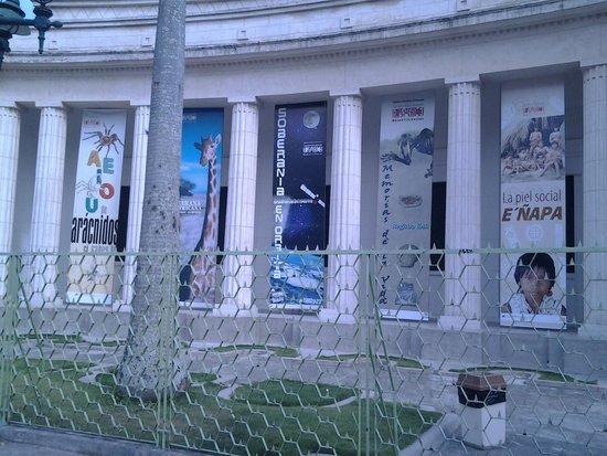 Museo de Ciencias Naturales: entrada
