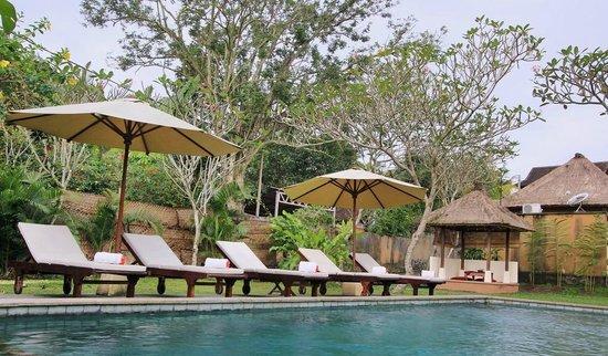 Chili Cottage: Swimming Pool