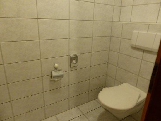 Hotel Simi Zermatt : トイレ