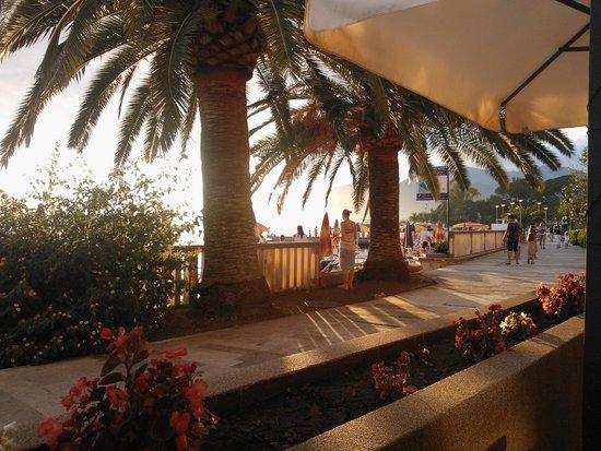 Palma Hotel: терраса при отеле где можно посидеть выпить кофе или пива