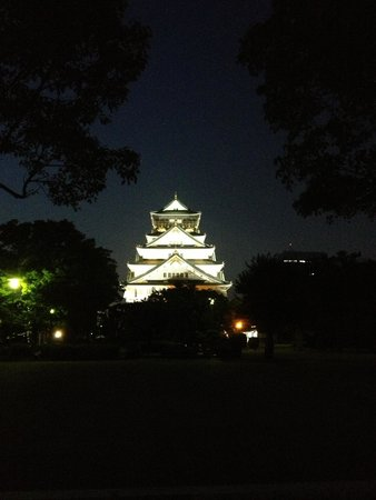 Front of Osaka Castle at night