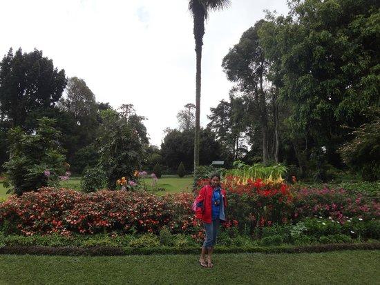 Victoria Park of Nuwara Eliya: garden view
