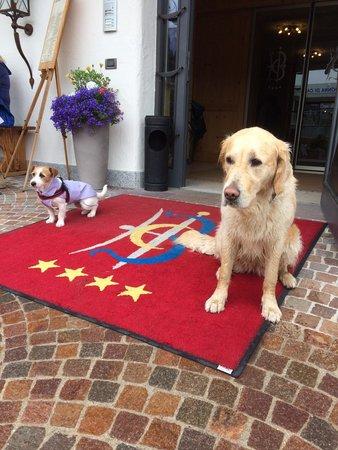 Hotel Campiglio Bellavista: LO STAFF D'Animazione canino!!!!! ECO  e  DICKY ����