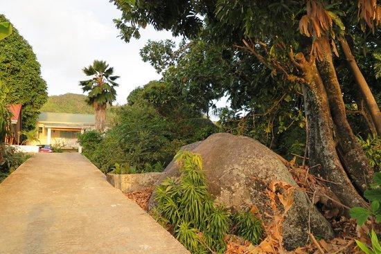 The Beach House: accesso