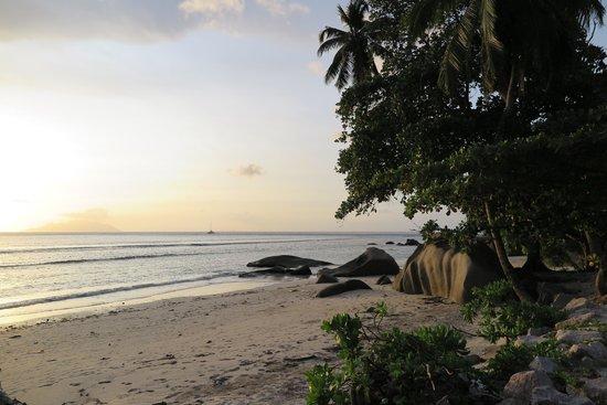 The Beach House: spiaggia