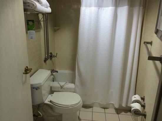SpringHill Suites Columbus Airport Gahanna: Bathroom