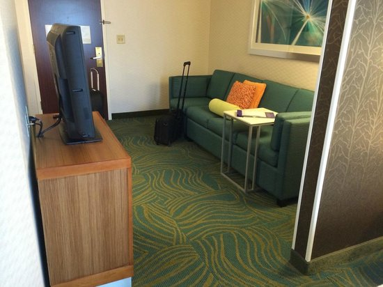 SpringHill Suites Columbus Airport Gahanna: TV Couch