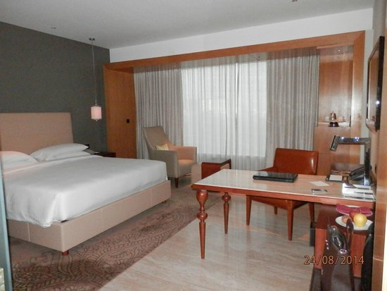 Park Hyatt Chennai: spacious room
