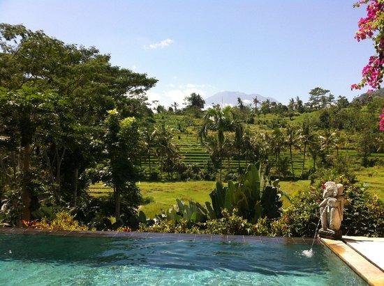 Surya Shanti Villa: Vue sur le mont Agung depuis l'une des piscines