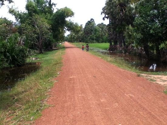 Khmer Ways - Moto Adventures Day Tours: peaceful countryside