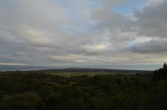 RACV Cape Schanck Resort: Awesome view!