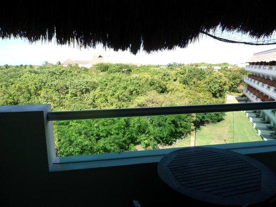 BlueBay Grand Esmeralda: Garden view (mini jungle, lots of animals)