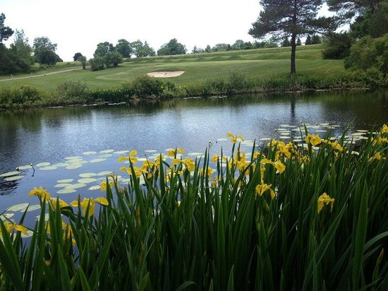 Fern Hall Inn Bed And Breakfast: Golf is wonderful with us